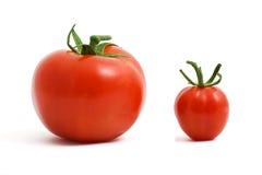 tomater två Arkivbild