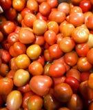 Tomater - utmärkt källa av vitamin C och Biotin Royaltyfri Fotografi