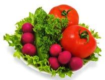 Tomaterettichgurke und grüner Salat Stockfotografie