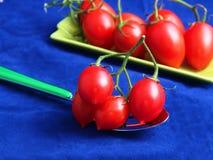 Tomates à goûter Photos libres de droits