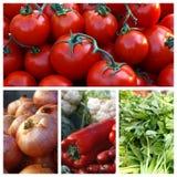 Tomates à l'oignon, céleri, légumes - collage Photos libres de droits