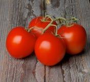 Tomates сливы младенца в сердце сформировали шар Стоковые Изображения RF