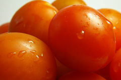 Tomates 1 Images stock