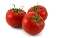 Tomates. Imagens de Stock