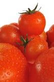 tomates Imágenes de archivo libres de regalías