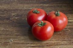 Tomates Imagem de Stock