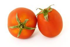 Tomates Fotografia de Stock Royalty Free