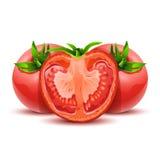 Tomates 12 Fotografia de Stock Royalty Free