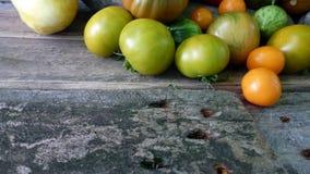 Tomates 43 Imagem de Stock