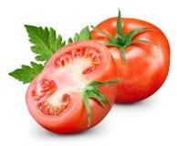 Tomates aislados en blanco Fotos de archivo libres de regalías