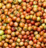 Tomates alaranjados vermelhos amarelos empilhados junto imagens de stock royalty free