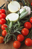 Tomates, alho e oignon Fotos de Stock Royalty Free