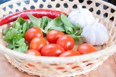 Tomates, alho, pimenta de pimentão e verdes Fotos de Stock Royalty Free