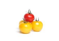 Tomates amarelos e vermelhos foto de stock royalty free