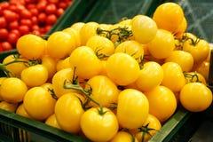 Tomates amarillos Imagen de archivo