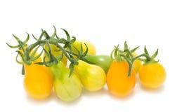 Tomates amarillos de la vid Imagen de archivo libre de regalías