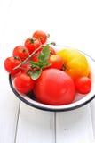 Tomates amarillos y rojos, albahaca Imagenes de archivo