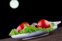 Tomates avec de la laitue, l'avocat et le pain croustillant Images stock