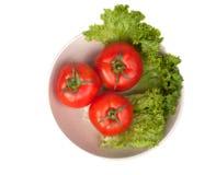 tomates avec de la laitue sur le plat photo libre de droits