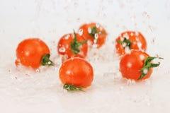 Tomates avec l'éclaboussure de l'eau sur le wite Image stock