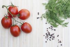 Tomates avec l'aneth Photographie stock libre de droits