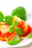 Tomates avec le basilic Photo libre de droits