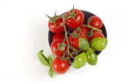 Tomates avec le plan rapproché de basilic Photos stock