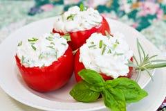 Tomates bourrées Photos libres de droits