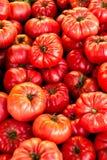 Tomates calientes Foto de archivo