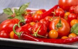 Tomates, cebollas, ajo e hierbas listos para asar Foto de archivo