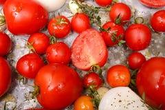 Tomates, cebollas, ajo e hierbas listos para asar Imagen de archivo libre de regalías