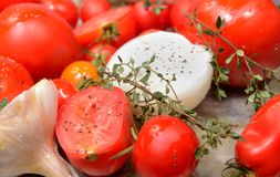 Tomates, cebollas, ajo e hierbas listos para asar Imagenes de archivo