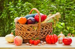 Tomates, cebollas y otras verduras en una cesta de mimbre en un wo Imágenes de archivo libres de regalías