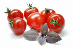 Tomates-cerises Image stock