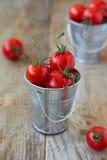 Tomates-cerises Photographie stock libre de droits