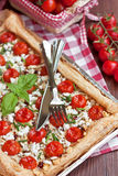 Tomates-cerises au goût âpre Images stock