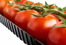 Tomates-cerises avec une tige dans une boîte plastikoyy photos stock