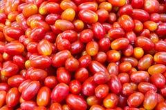 Tomates-cerises colorées photo stock