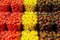 Tomates-cerises colorées dans les paniers en plastique Image stock