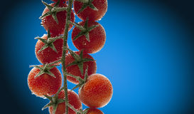 Tomates-cerises dans l'eau avec des bulles d'air Photographie stock libre de droits