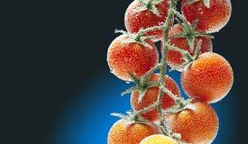 Tomates-cerises dans l'eau avec des bulles d'air Image libre de droits