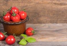 Tomates-cerises dans la cuvette Image libre de droits