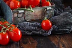Tomates-cerises dans une boîte en métal image libre de droits