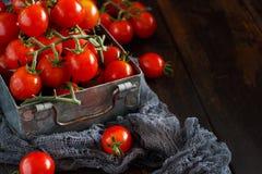 Tomates-cerises dans une boîte en métal photo libre de droits