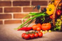 Tomates-cerises de déchirure sur la branche Sur le fruit frais de fond Photographie stock libre de droits