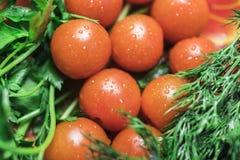 9 tomates-cerises entre le persil et l'aneth Photos stock