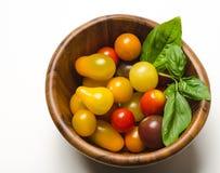 Tomates-cerises et feuilles de basilic dans la cuvette en bois Photo libre de droits