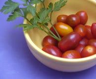 Tomates-cerises et persil Photo stock