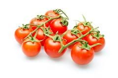 Tomates-cerises fraîches sur la vigne sur un fond blanc Photos libres de droits