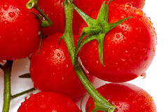 Tomates-cerises mûres images stock